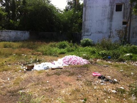 20110702-114615.jpg