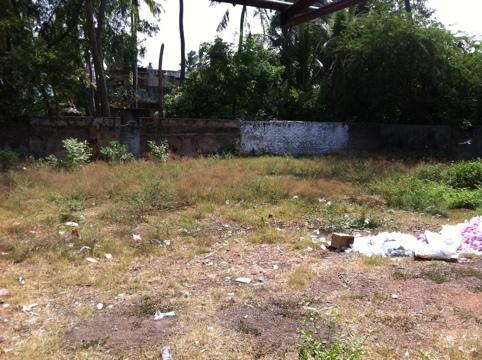 20110702-114954.jpg
